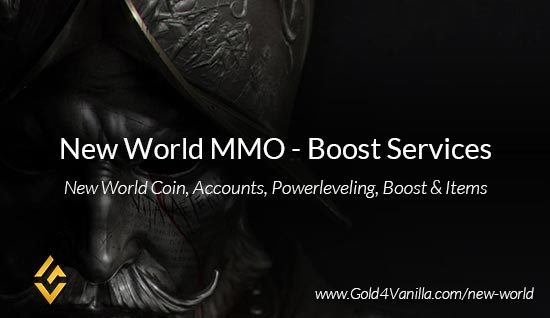 New World Boost & Carry Services